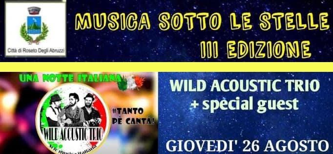 Musica sotto le stelle 3^ edizione - Wild Acoustic Trio + special guest